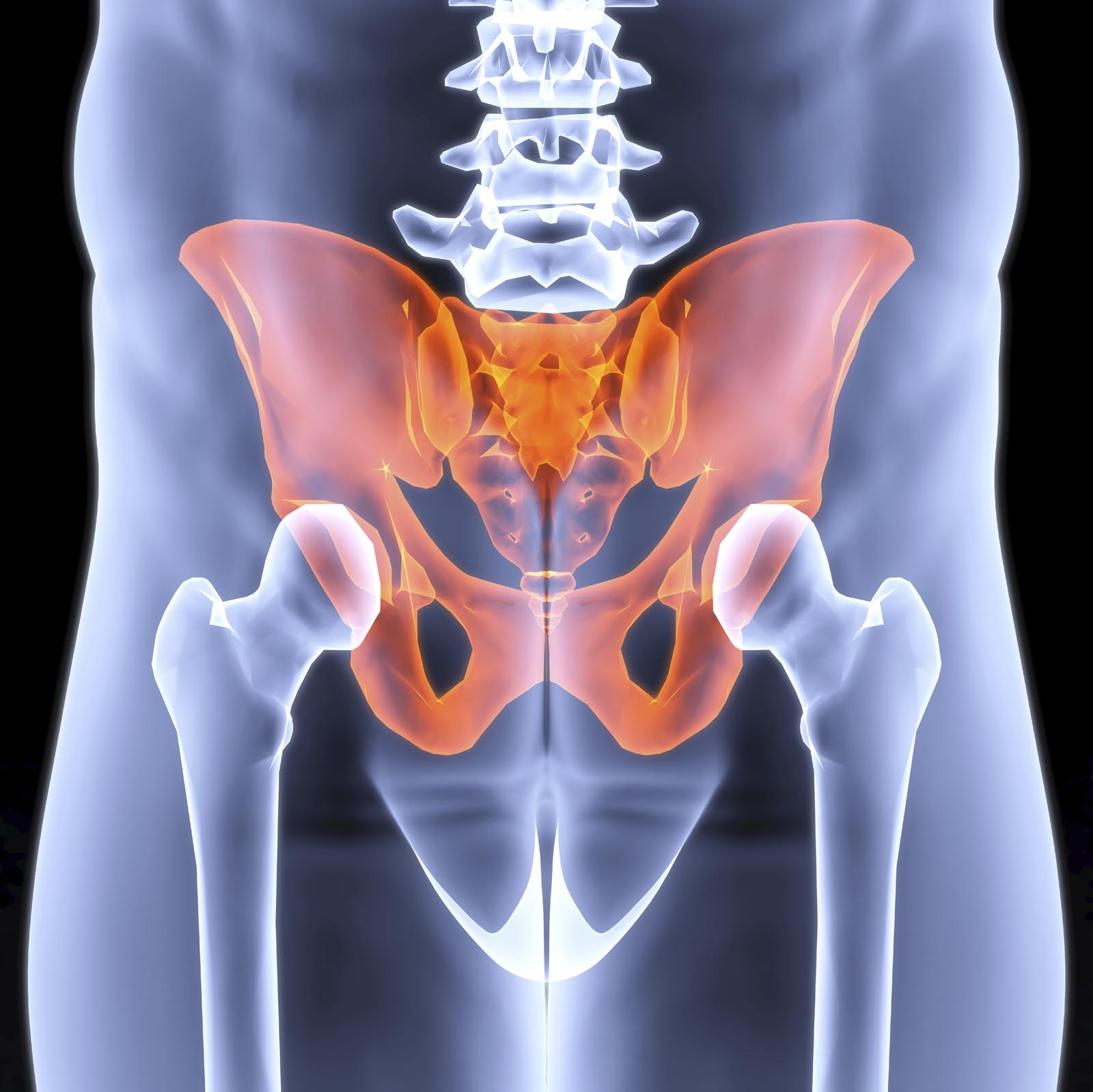 male pelvis under the X-rays. pelvis is highlighted in red.